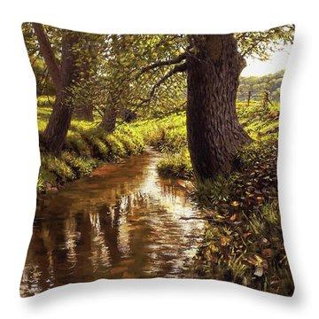 Lyon Valley Creek Throw Pillow
