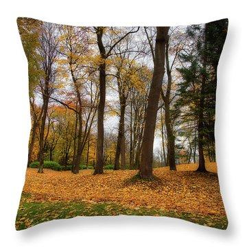 Lysaker Woods Throw Pillow