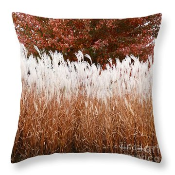 M Landscapes Fall Collection No. Lf46 Throw Pillow