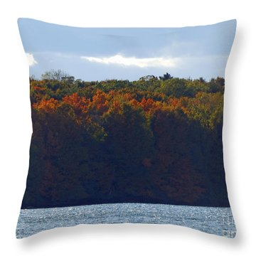 M Landscapes Fall Collection No. Lf50 Throw Pillow
