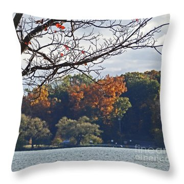 M Landscapes Fall Collection No. Lf51 Throw Pillow
