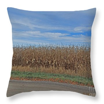 M Landscapes Fall Collection No. Lf58 Throw Pillow