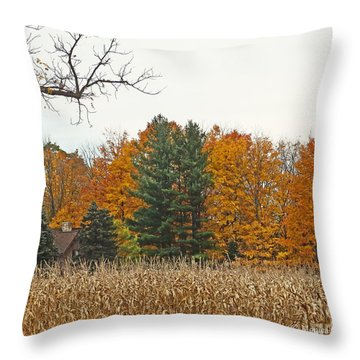 M Landscapes Fall Collection No. Lf60 Throw Pillow