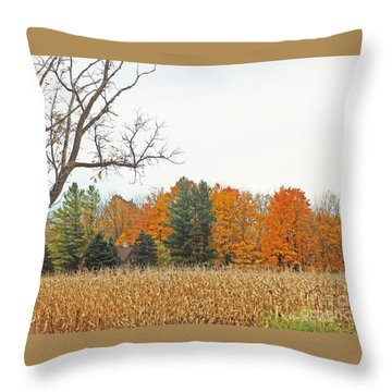 M Landscapes Fall Collection No. Lf61 Throw Pillow