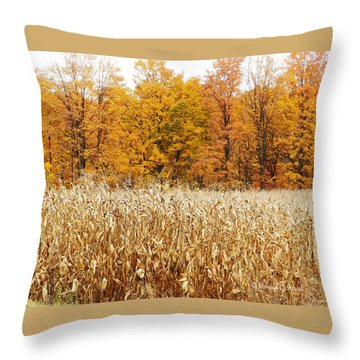 M Landscapes Fall Collection No. Lf62 Throw Pillow