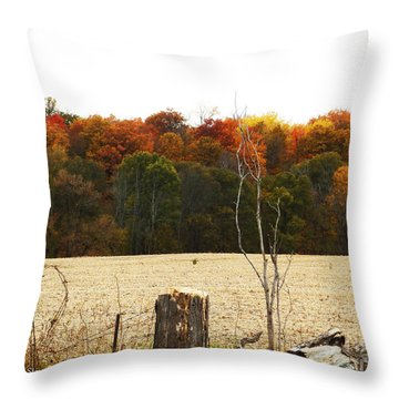 M Landscapes Fall Collection No. Lf66 Throw Pillow