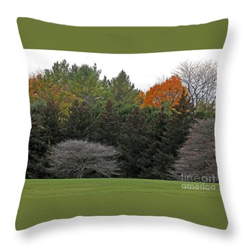 M Landscapes Fall Collection No. Lf67 Throw Pillow