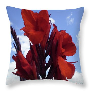 M Shades Of Red Flowers Collection No. R16 Throw Pillow