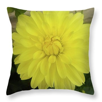 M Shades Of Yellow Flowers Collection No. Y90 Throw Pillow