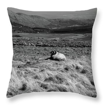 Maam Valley Throw Pillow