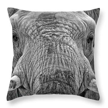 Mabu Up Close N Personal Throw Pillow