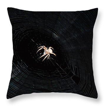 Weaver The Second Throw Pillow