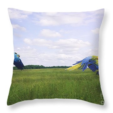Macaws Flying Together Throw Pillow by Melissa Messick