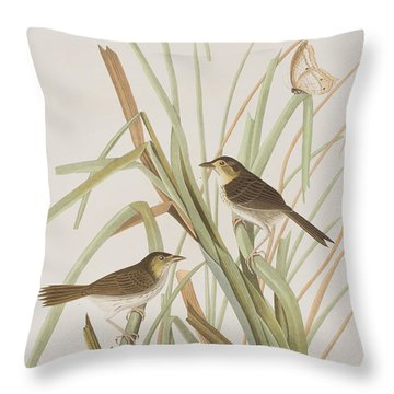 Macgillivray's Finch  Throw Pillow by John James Audubon
