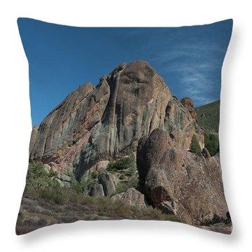 Machete Ridge Lighter Throw Pillow