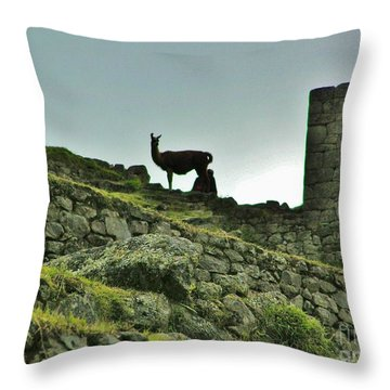 Throw Pillow featuring the photograph  Macchu Picchu Llama Silhouette  by Michele Penner