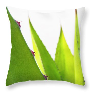 Mack The Knife 1 Throw Pillow by Skip Hunt