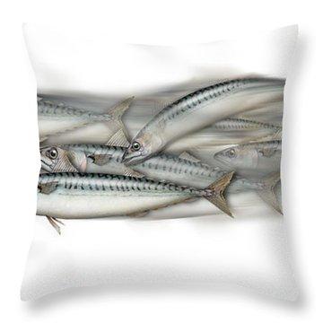 Mackerel School Of Fish - Scomber - Nautical Art - Seafood Art - Marine Art -game Fish Throw Pillow
