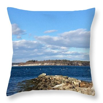 Mackworth Island Falmouth Maine Throw Pillow