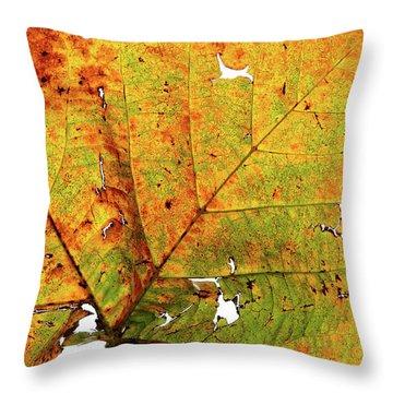 Macro Autum Throw Pillow