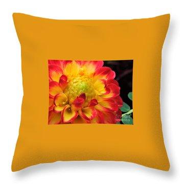 Macro Dahlia Throw Pillow