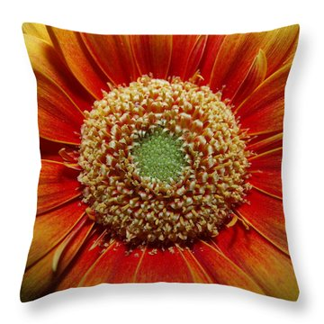Macro Flower Throw Pillow by Michael Canning
