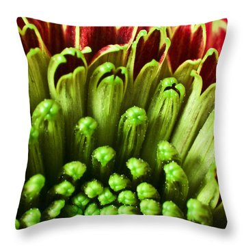 Macro Flower Throw Pillow by Svetlana Sewell