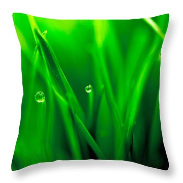 Macro Image Of Fresh Green Grass Throw Pillow