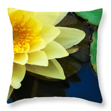 Macro Image Of Yellow Water Lilly Throw Pillow