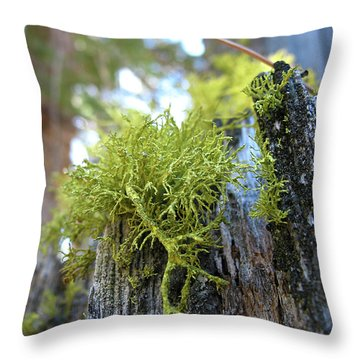 Macro Life Throw Pillow