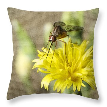 Macro Photography Of A Mosquito Over A Lettuce Flower Throw Pillow by Claudia Ellis