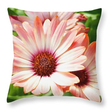 Macro Pink Cinnamon Tradewind Flower In The Garden Throw Pillow by Amy McDaniel