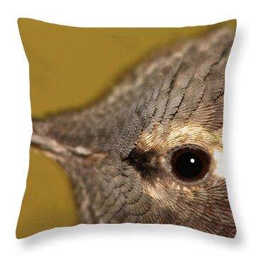 Macro Portrait Of Costa's Hummingbird Throw Pillow