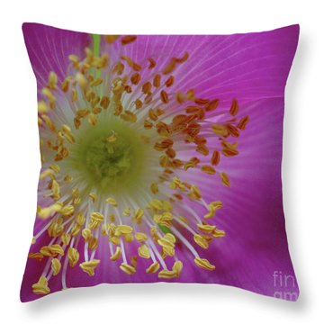 Macro Rosehip Bloom Throw Pillow