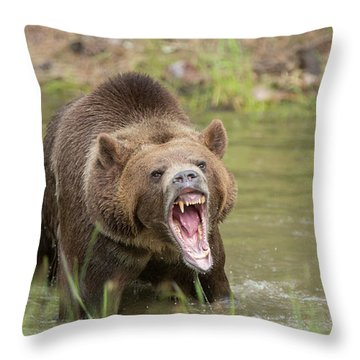 Mad Bear Throw Pillow