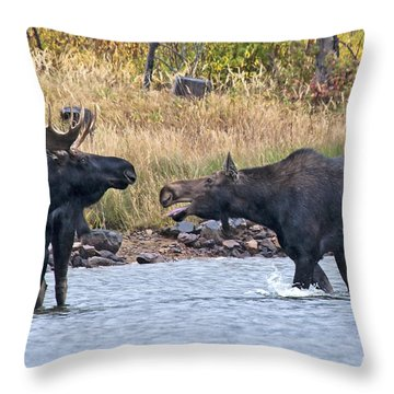 Mad Mamma Moose Throw Pillow
