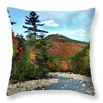 Mad River By Welch And Dickey  Throw Pillow