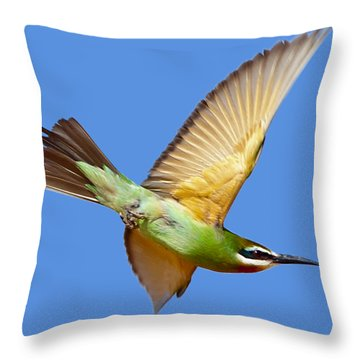 Madagascar Bee-eater T-shirt Throw Pillow