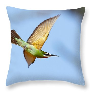 Madagascar Bee Eater In Flight Throw Pillow