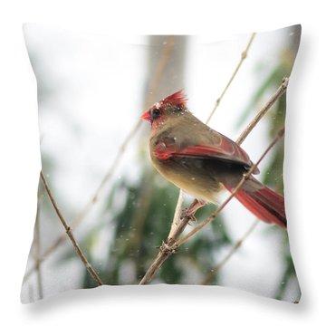 Madam Cardinal Throw Pillow