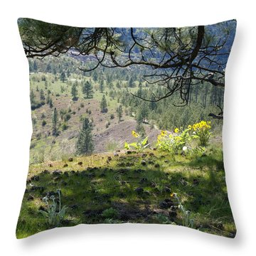 Throw Pillow featuring the photograph Made In The Shade by Ben Upham III