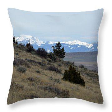 Madison Buffalo Jump State Park In Spring Throw Pillow by Bruce Gourley