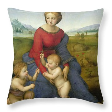 Madonna In The Meadow Throw Pillow by Raphael