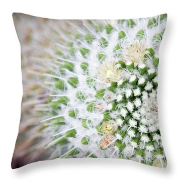 Madrid Botanical Garden 1 Throw Pillow by Ana Mireles