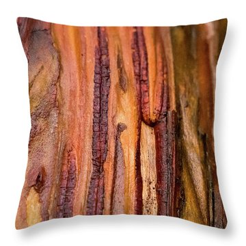 Madrona Abstract Throw Pillow