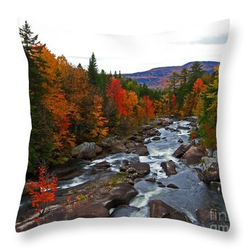 Magalloway River In Fall Throw Pillow