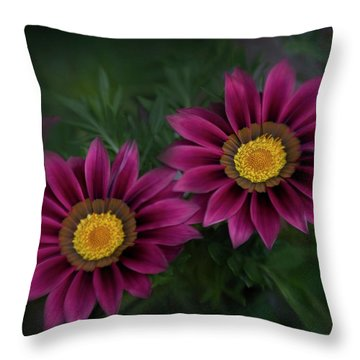 Throw Pillow featuring the photograph Magenta African Daisies by David and Carol Kelly