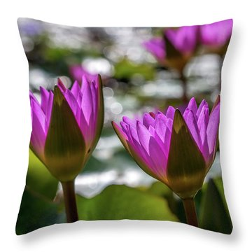 Magenta Water Lilies Throw Pillow
