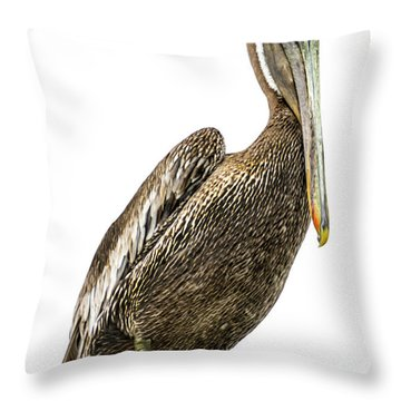 Majestic Gulf Shores Pelican 1071a Throw Pillow