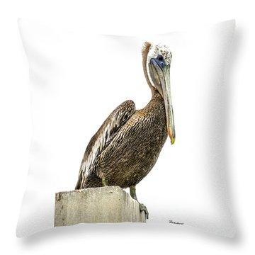 Majestic Gulf Shores Pelican 1071a Throw Pillow